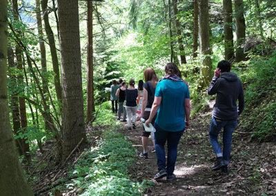 Ellbach Wochenendseminar Potenzial entfalten in der Natur unterwegs